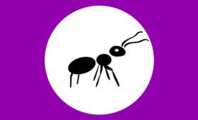 AntBrowser – антидетект браузер